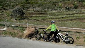 In Böen bis zu 100km/h: Im Bild am Grasbusch einigermaßen zu erkennen