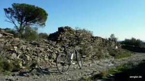 Passt auch perfekt ins (leichte) Gelände: Das Senglar Trekking-Pedelec