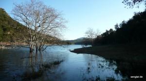 ...gut an den im Wasser stehenden Bäumen zu erkennen