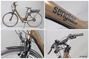 Senglar City-Pedelec, Braun glänzend, Starrgabel